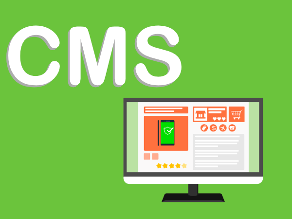 The 3 best CMS for online store